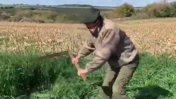 Cavani, allena gli addominali con la falce