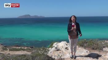 ERROR! Favignana, l'isola covid free riapre e attende i turisti
