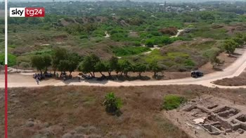 Israele, abbracci agli alberi contro la tristezza da Covid