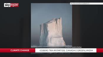 Antartide, iceberg come cattedrali nelle foto di Sandra Herber