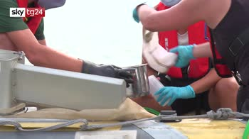 Ocean rescue, la plastica dai fiumi