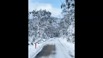 Neve in Tasmania a causa delle correnti artiche