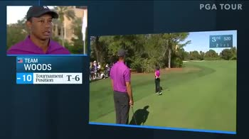 tiger-charlie-woods-show-green