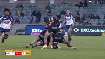 HL BRUMBIES-FORCE RUGBY AUSTRALIA SF _4229408