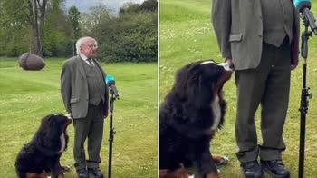 Il presidente irlandese gioca con il cane durante discorso