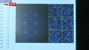 emergenza virus, come si identificano le varianti del covid