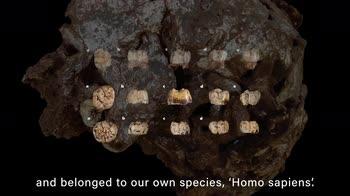 La più antica sepoltura nella storia dell'umanità. VIDEO