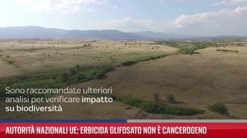 Autorit� nazionali Ue: erbicida glifosato non � cancerogeno
