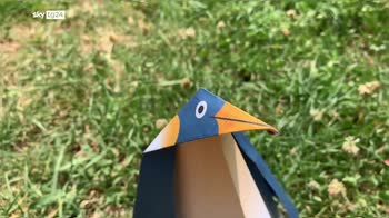 ERROR! Clip origami