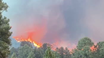 Stati Uniti, vasti incendi in California. VIDEO