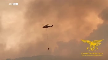 Incendi in Sardegna, centinaia di evacuati nell'Oristanese