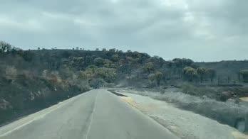 Sardegna, centinaia di evacuati per incendio in Oristanese
