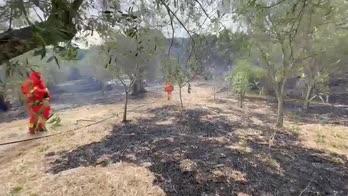 Incendi in Sardegna, i soccorsi al lavoro a Cuglieri