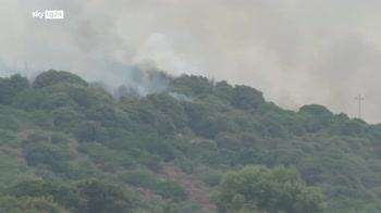 Incendi in Sardegna, la procura apre 4 fascicoli