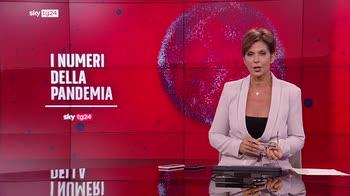 Covid, i Numeri della pandemia del 29 luglio - Seconda parte