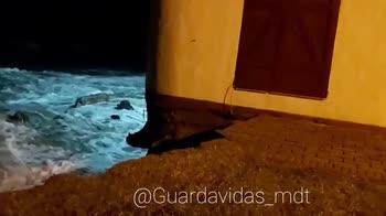 Argentina, casa sulla spiaggia crolla in mare. VIDEO