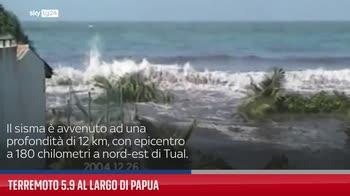 Terremoto 5.9 al largo di Papua