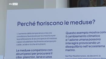 Pre-Cop26, Santoro: abbiamo portato il mare a Milano