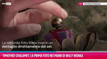VIDEO Timothée Chalamet, prima foto nei panni di Willy Wonk