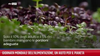 Giornata mondiale dell?alimentazione, un aiuto per il Pianeta