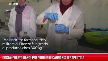 Costa: presto bandi per produrre cannabis terapeutica