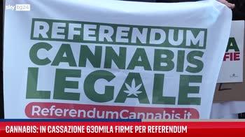 Cannabis, 630mila firme per un referendum